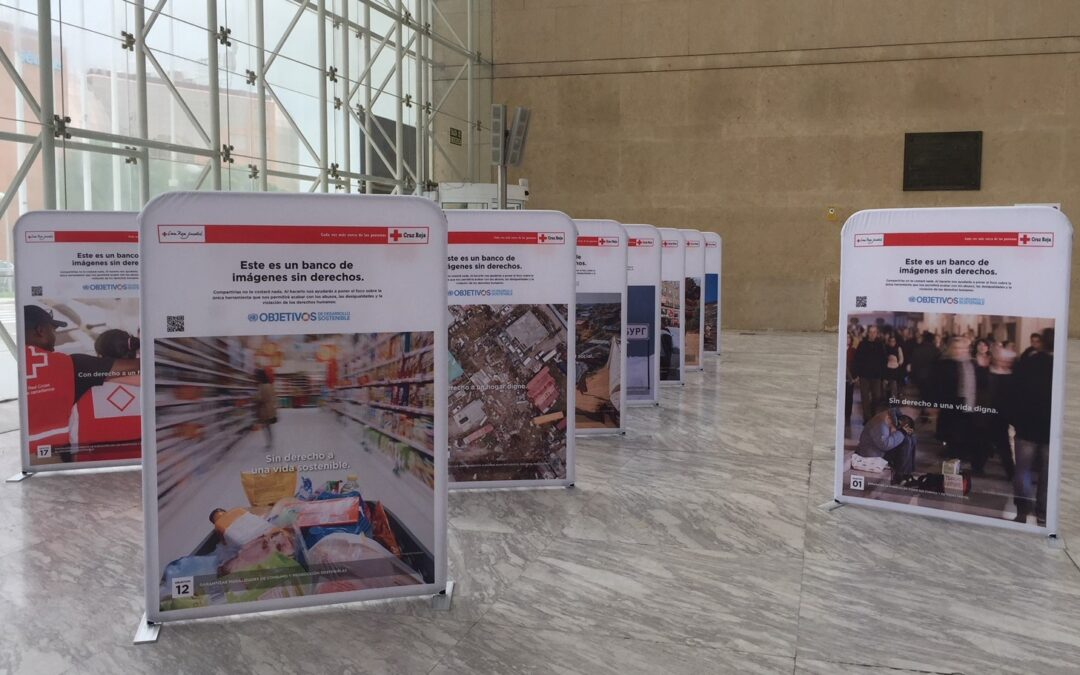 Exposición ODS de Cruz Roja-Actividad Medioambiental